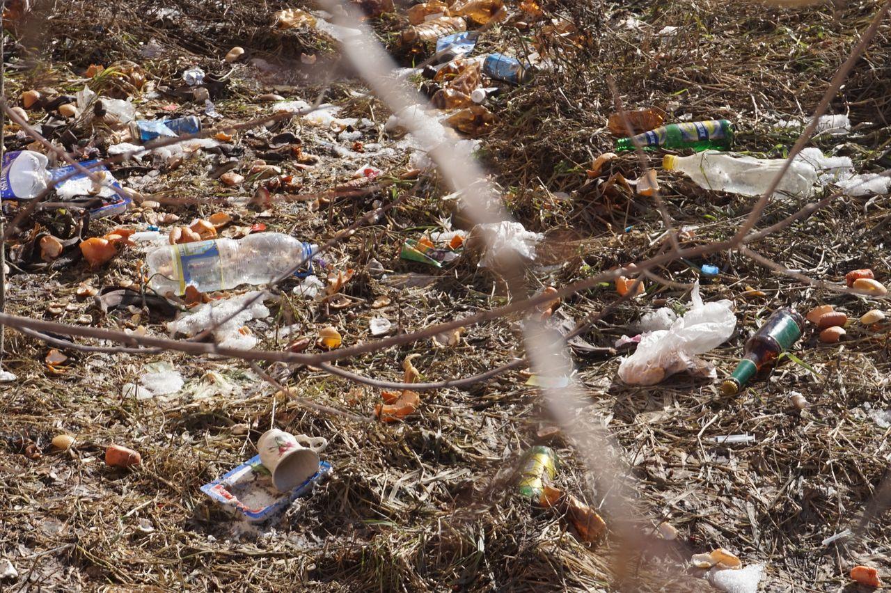 картинка мусор из окна ковер многие считают